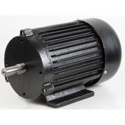 FM300 Elektrimootor...